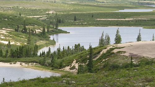Det norsamerikanske vannskillet mellom Sandy Lake og Whitefish Lake. Foto: Christian Engelschi?n