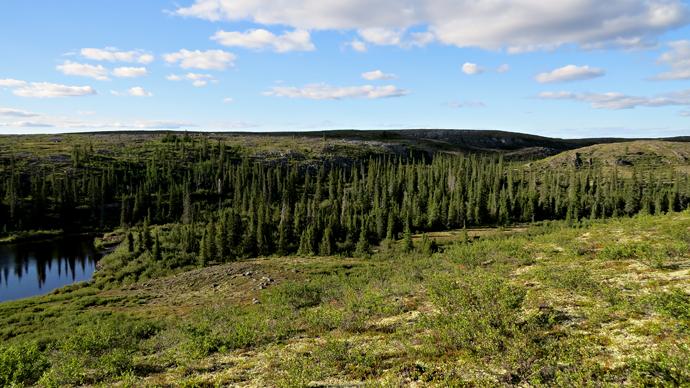 Vinterkvarteret til Helge Ingstad slik det aldri er vist f?r. Foto: Christian Engelschi?n, Sandy Lake Expedition, 2013.